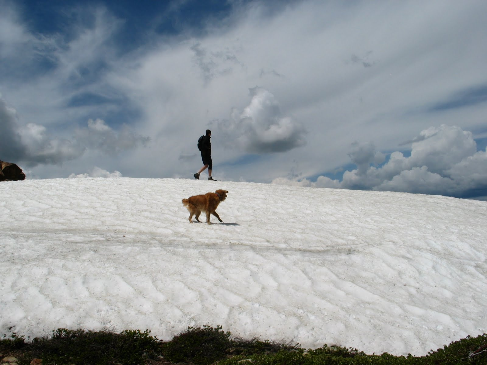 2009-elwell-snowpack